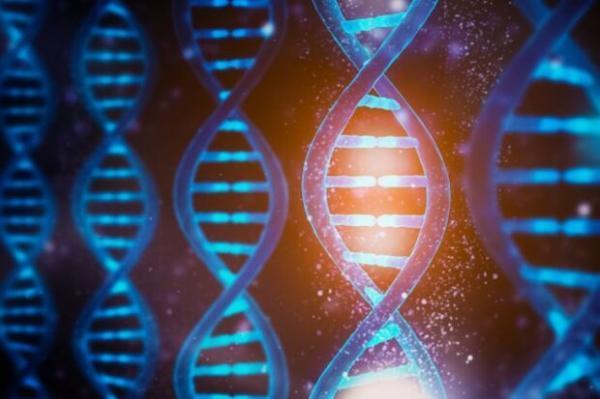 هوش مصنوعی تحلیل ژنتیک را دقیق تر و سریع تر می نماید