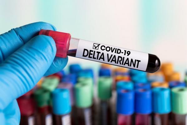همه چیز درباره کرونای دلتا یا هندی؛ علائم ویروس هندی چیست؟